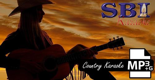 2013 COUNTRY HITS VOL 1 - SBI ALL STARS